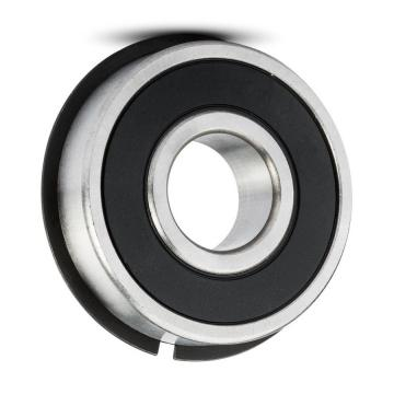 Stainless Steel Ball Bearing Ss608 Ss6200 Ss6201 Ss6202 Ss6203 Ss6204 Ss6205 Ss6206 Ss6207 Ss6208 Zz and Ss 6810 Ss 6900 Ss 6305