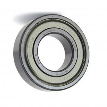 NSK NTN KOYO NACHI Brand 6201 6202 bearing