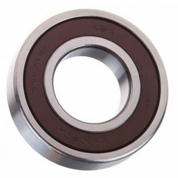 Deep Groove Ball Bearing NSK 6301du2 bearing