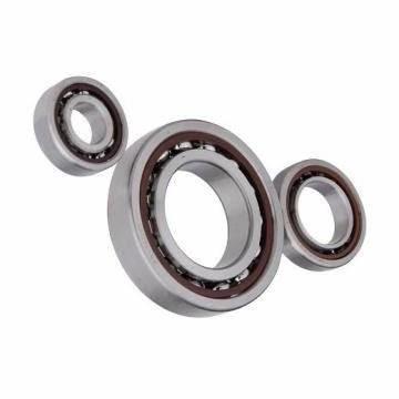 65*140*33mm NU 313 ECP Bearings Single Row Cylindrical Roller Bearing NU313ECP NU313E-TVP NU313ETN for Machinery