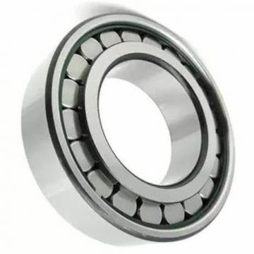 SKF NU 307 RN 307 Cylindrical Roller Bearing NU307ECP RN307ECM Bearings