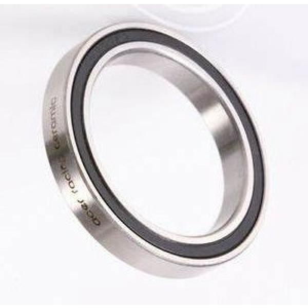 Mechanical Sic Ceramic Needle Bearing #1 image